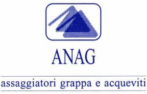 logo_anag